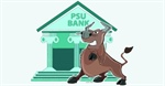 Capital infusion fails to lift PSU Bank index