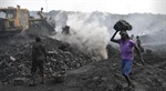 Coal mining auction helps Coal India gain 6 per cent intraday