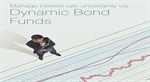 Top performing dynamic bond funds