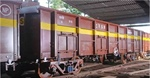 Italian arm of Titagarh Wagons wins order; stock up 6 per cent